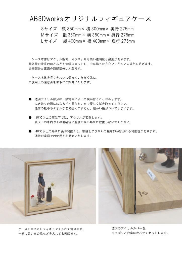 ab3d-case3